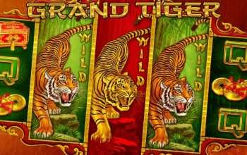 € 250 bonus op Grand Tiger